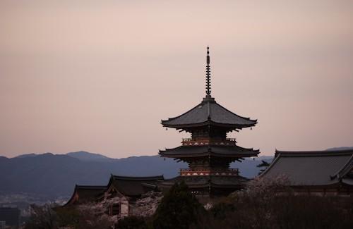 京都でヒゲ脱毛するなら